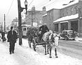 """Winter on Hollis Street, Halifax, Nova Scotia, Christmas Trees, ca. 1947"".jpg"