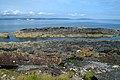 'Mackerel Rocks', Bangor - geograph.org.uk - 1451408.jpg