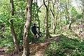 'Take Off' in Hagg Stones Quarry, Oughtibridge - geograph.org.uk - 1281863.jpg