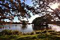(1)Duck Pond Centennial Park.jpg