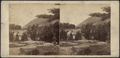 (View in) ... Cold Springs, from Robert N. Dennis collection of stereoscopic views.png