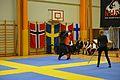 Örebro Open 2015 158.jpg