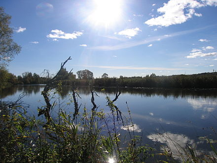Larpia, a left distributary of the Oder in Police, Poland Larpia-rzeka.jpg