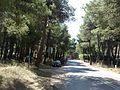 Οδος Λαμια - panoramio.jpg
