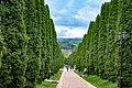 Аллея возле Долины роз в Кисловодском национальном парке.jpg
