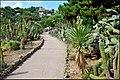 Ботанический сад Пинья де роса - panoramio (5).jpg