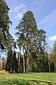 Дендрологічний парк «Тростянець.jpg
