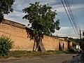 Домініканський монастир - Башта та мур 02.JPG