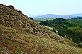Живописные останцы на склоне холма - panoramio.jpg