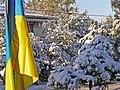 Зима в Афинах - panoramio (3).jpg