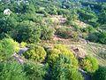 Ингулец - panoramio (3).jpg