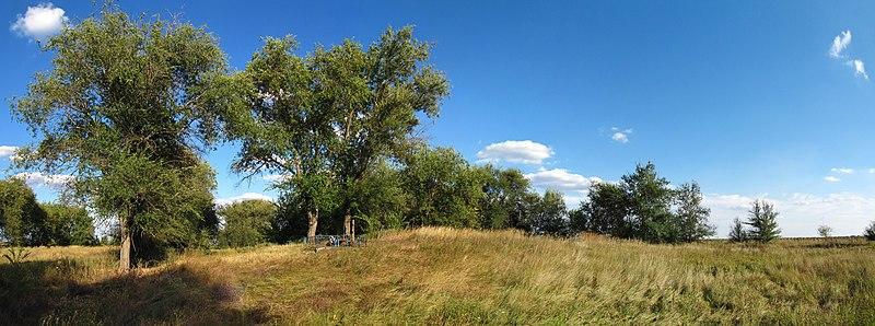 Панорама кургану на кладовищі села Новоселівка