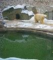 Московский зоопарк, м.Баррикадная, Москва, Россия - panoramio - Oleg Yu.Novikov (7).jpg