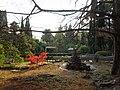 Парк «Дендрарий», японский сад, Курортный проспект, 74, Хостинский район, Сочи, Краснодарский край.jpg