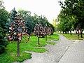 Свадебные замочки в центре Ярославля за монастырем - panoramio.jpg