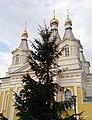 Свято Александро-Невский собор (34401993295).jpg