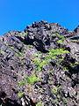 Скелі МОДРу 06052014343м.jpg