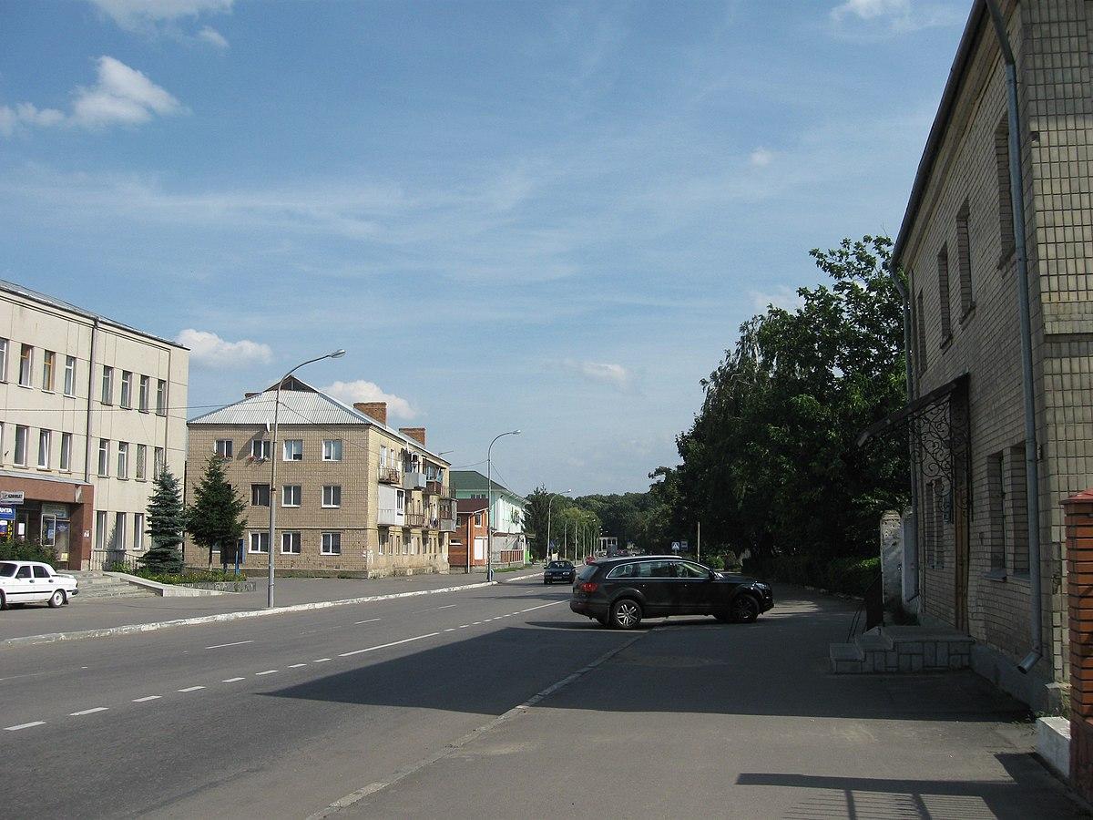 Литин (Винницкая область) — Википедия