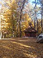 Хрестильня в осінньому лісі.jpg
