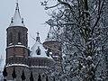 Южный фасад собора св. Петра зимой.JPG