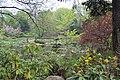 Японские сады во Вроцлаве, Польша.JPG