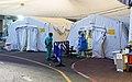 אוהלי קורונה שיבא ליד המיון.jpg