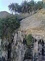 باغ چک چک - panoramio.jpg