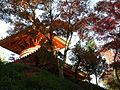 三滝寺 - panoramio - full moon69.jpg