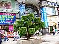 太美的商业步行街 - panoramio.jpg