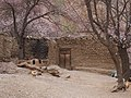 库祖村 - Kuzu Village - 2015.04 - panoramio (1).jpg