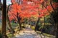 永保寺庭園 - panoramio - たじみ百景クラブ (6).jpg