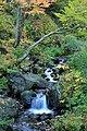 滝見の湯から見える滝 - panoramio.jpg