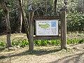 藤垈の滝公園案内図.jpg