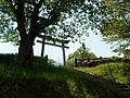黄幡公園 - panoramio (2).jpg