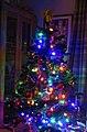 -2019-12-04 Christmas tree, Trimingham.JPG