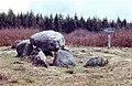 . Dolmen de la pierre Courcoulé.jpg