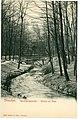 03368-Dresden-1903-Im Park des Garnisonslazarettes-Brück & Sohn Kunstverlag.jpg