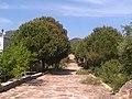 10. Sokak - panoramio - hursitakinci.jpg