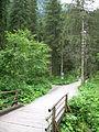 1399 - Nationalpark Hohe Tauern - Krimmler Wasserfälle.JPG