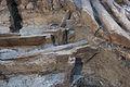 14-11-15-Ausgrabungen-Schweriner-Schlosz-RalfR-032-N3S 4015.jpg