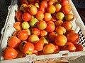 1495Foods fruits of Bulacan 01.jpg