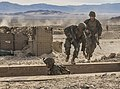15th MEU Marines train in combined arms training 141215-M-ST621-1152.jpg