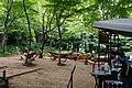 170811 Rokko Alpine Botanical Garden Kobe Japan19n.jpg