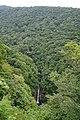 180727 Nasu Heisei-no-mori Forest Nasu Japan11.JPG