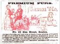1853 Saroni ElmSt BostonAlmanac.png