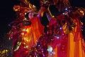 19.11.16 Todmorden Lamplighter Festival 198 (31123397865).jpg