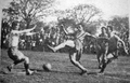 1942 Defensores de Belgrano 0-Rosario Central 2 -1.png