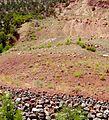 1995 landslide at base of Sentinal Slide in Zion Canyon.jpeg