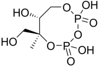 Skeletal formula of 2-C-methyl-D-erythritol-2,4-cyclodiphosphate