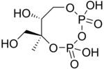 Principles of Biochemistry/Biosynthesis of lipids - Wikibooks ...